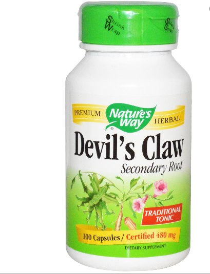 Duivelsklauw secundaire Root, 480 mg (100 Capsules) - Nature's Way