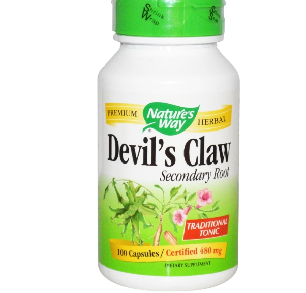 Devil's Claw Secondary Root 480 mg (100 Capsules) - Nature's Way