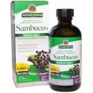 Sambucus, Black Elder Berry (vlierbessen) Extract (120 ml) - Nature's Answer
